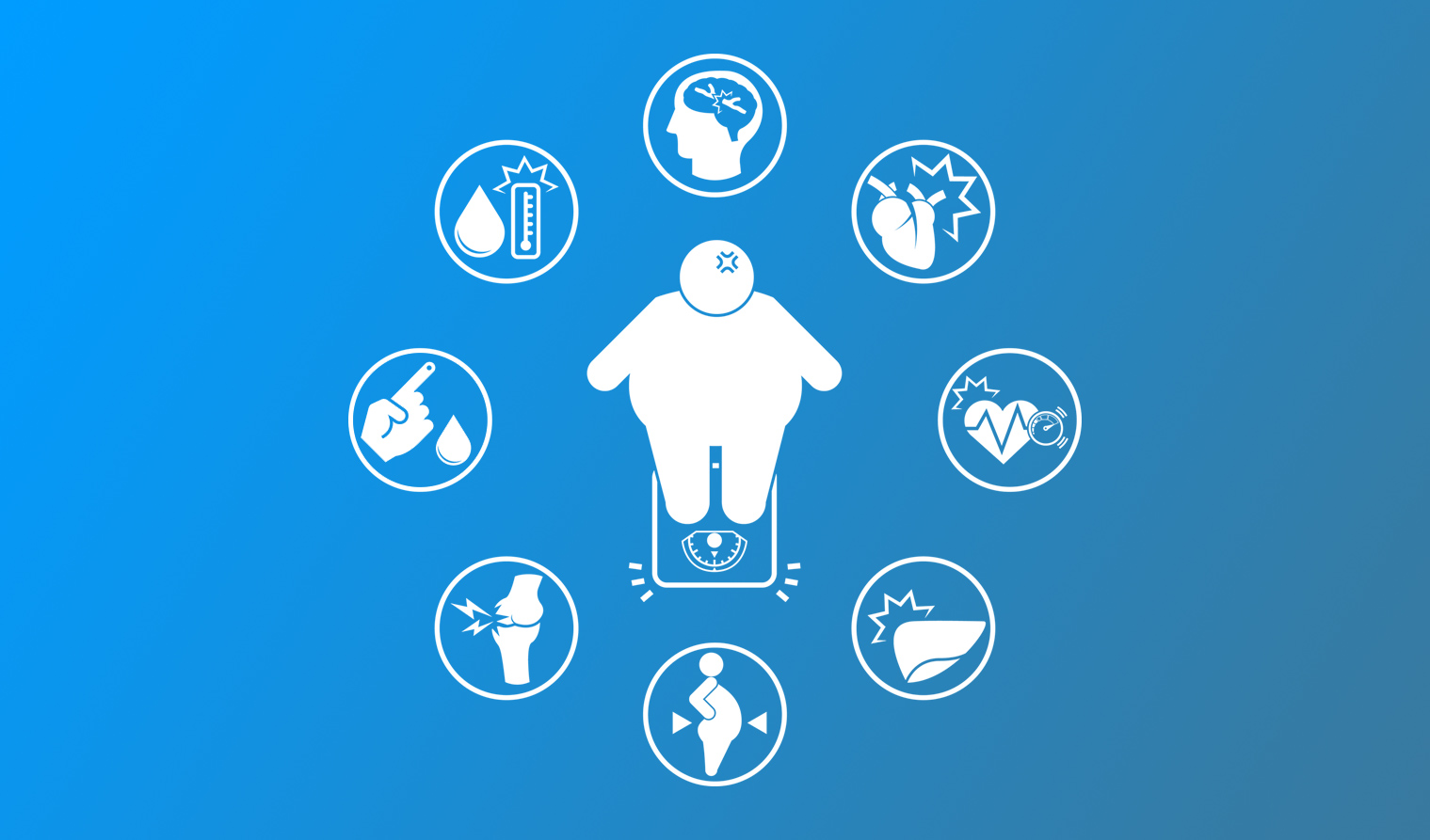 Microbiote intestinal, métabolisme énergétique et obésité – Partie 2
