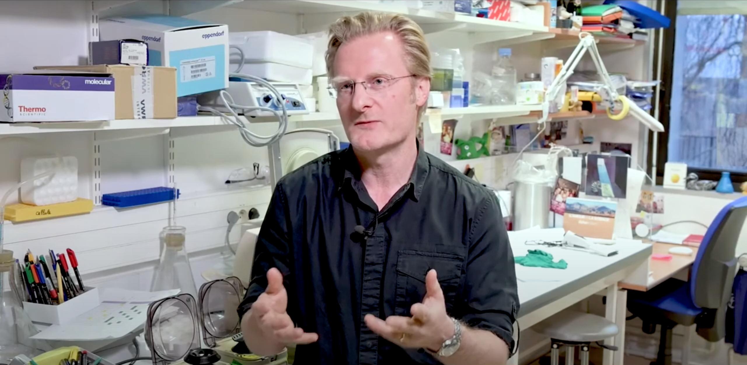 Le dialogue entre le microbiome et le système immunitaire