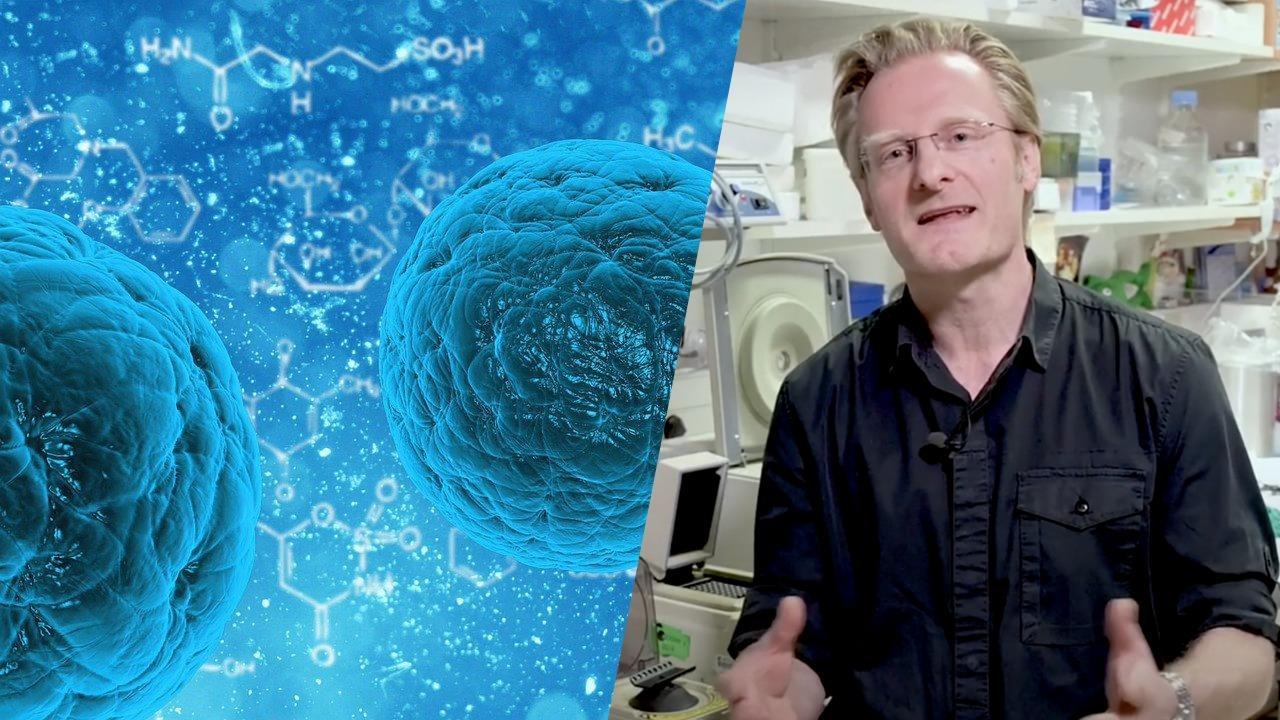 Comment maintenir un dialogue harmonieux entre microbiome et système immunitaire?