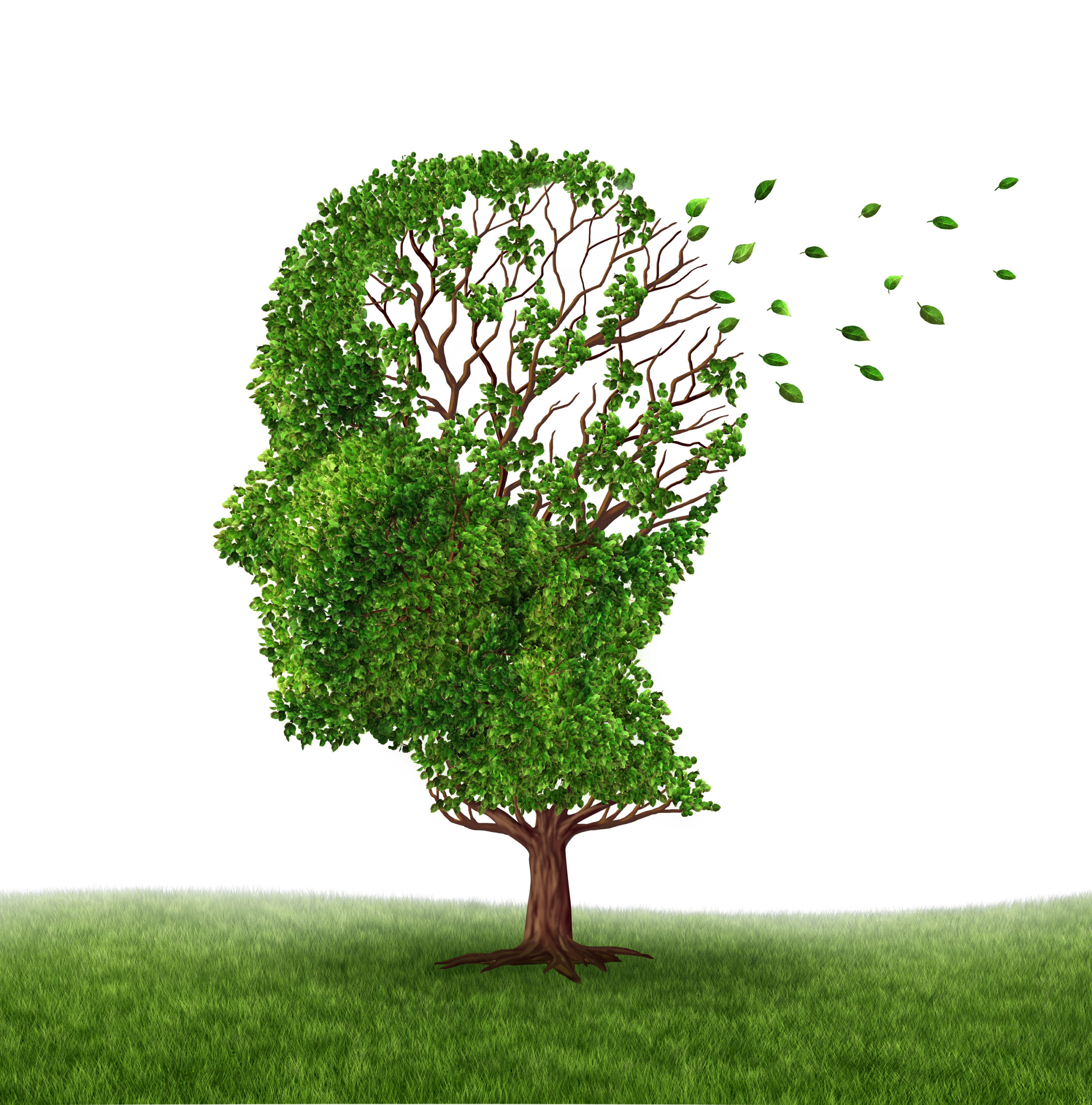 Alzheimer et microbiote: l'hygiène buccale récemment pointée du doigt